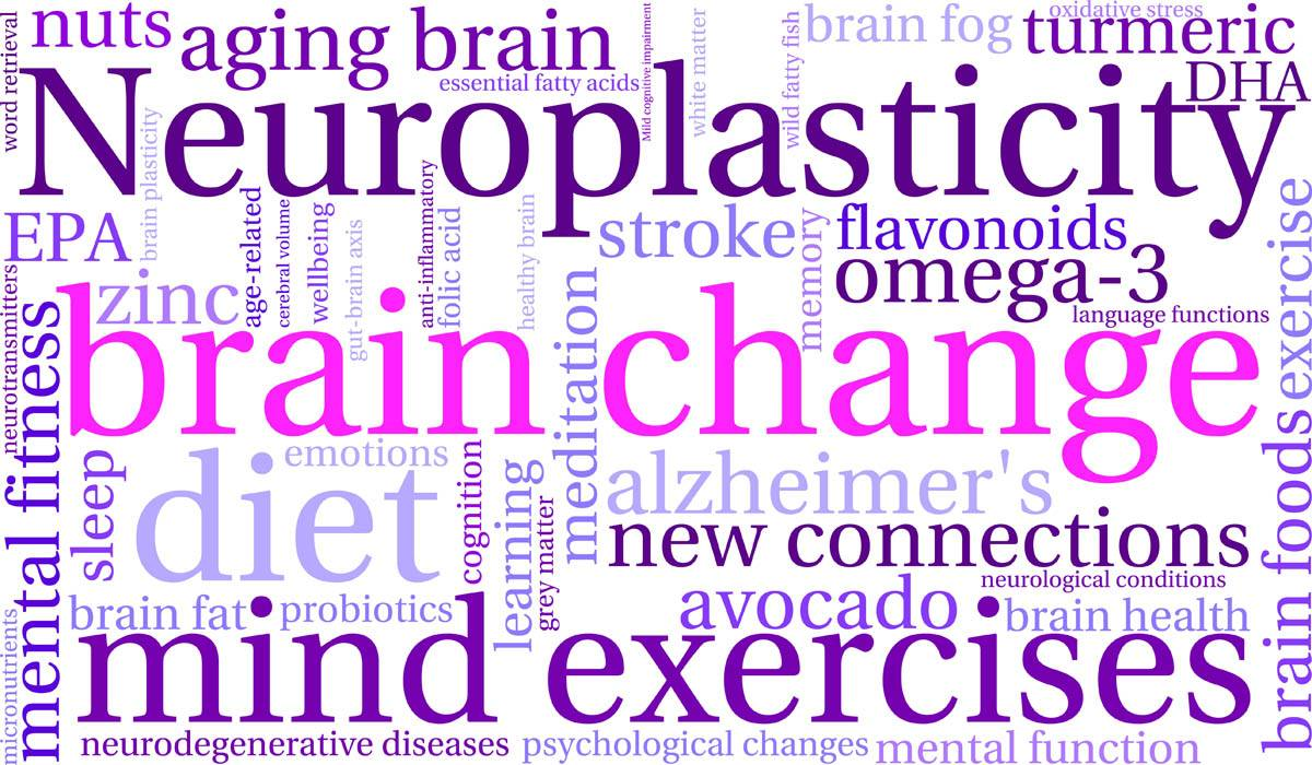 neuroplasticity-brain-change-mind-exercise